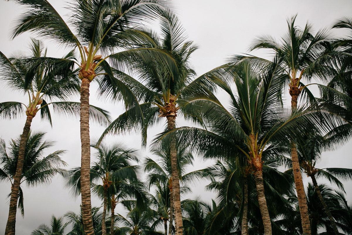 Fairmont-Orchid-Hawaii-Wedding-JA.013