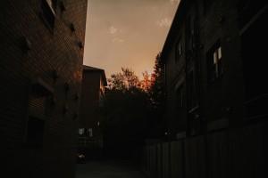 Edgecliff_streets019