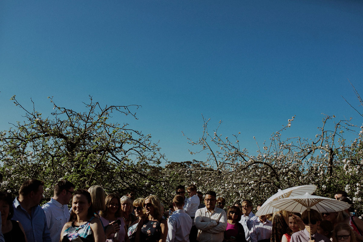 logan_brae_blue_mountains_wedding-037