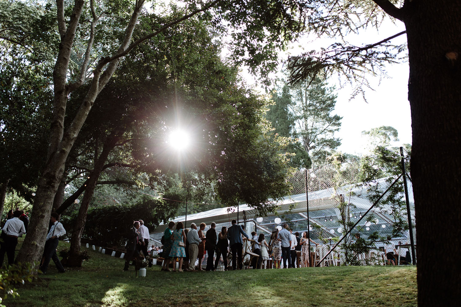 blue mountains wedding marquee
