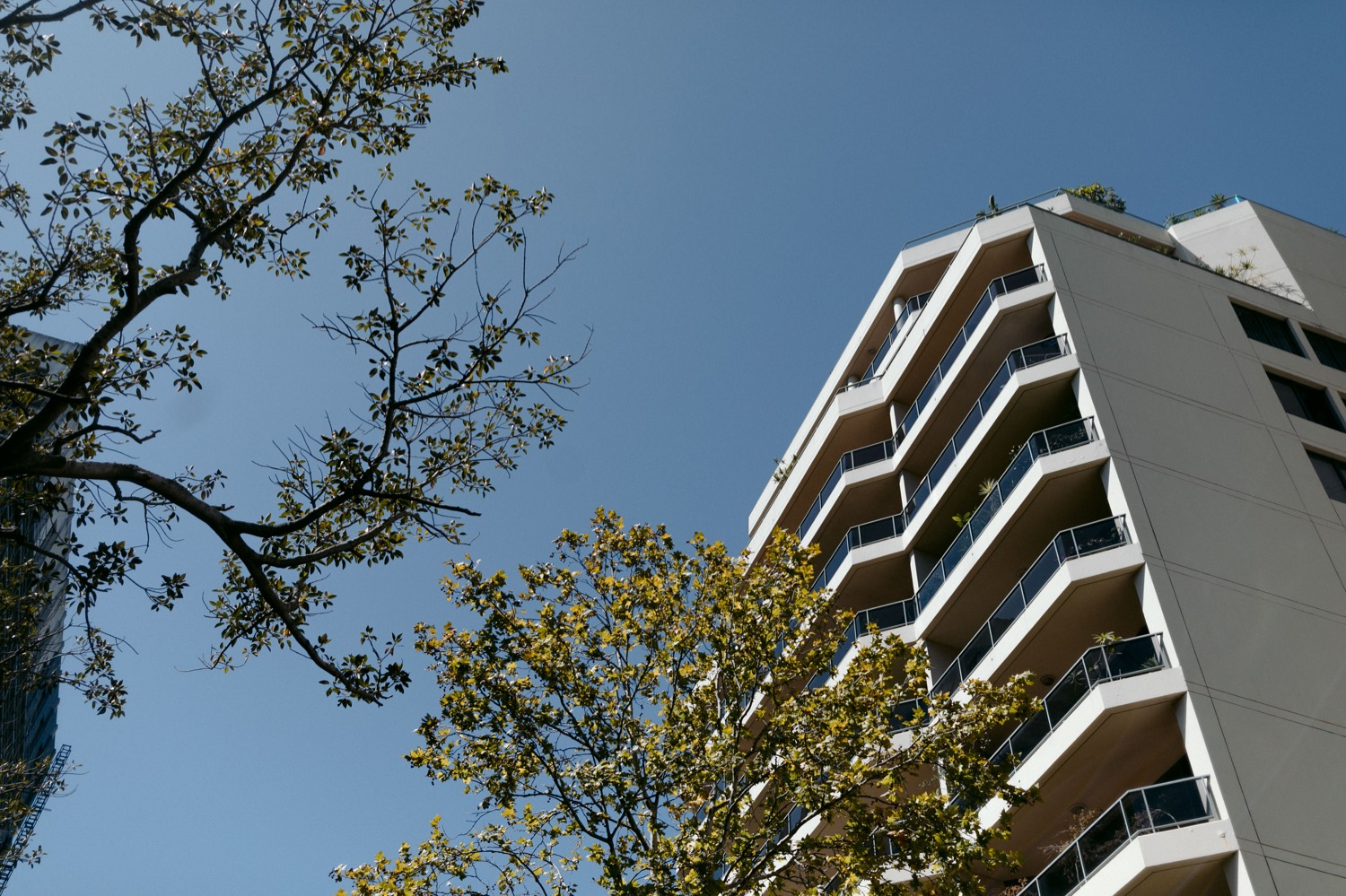 block of apartments in North Sydney